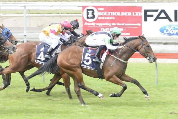 Five Stars Strikes at Te Rapa